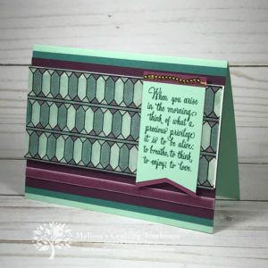 DIY handmade card featuring the Graceful Glass Designer Vellum, Stampin' Write Markers, Blends Alcohol Markers and the Enjoy Life Stamp Set by Stampin' Up!. Project created by Melissa Kerman at Melissa's Crafting Treehouse.