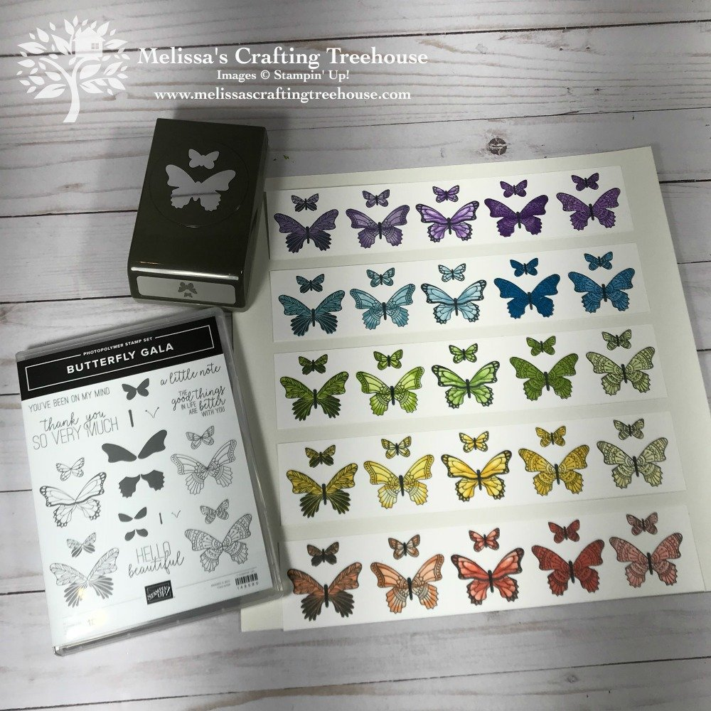 Today's project features lots of butterflies in a rainbow of colors, with the Gingham Gala Product Suite. The Rock and Roll Stamping Technique is shown.