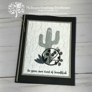 Check out this alternative way to do spotlighting with images that shine like they are in a spotlight. Features the Flowering Desert and Crackle Stamp Sets.