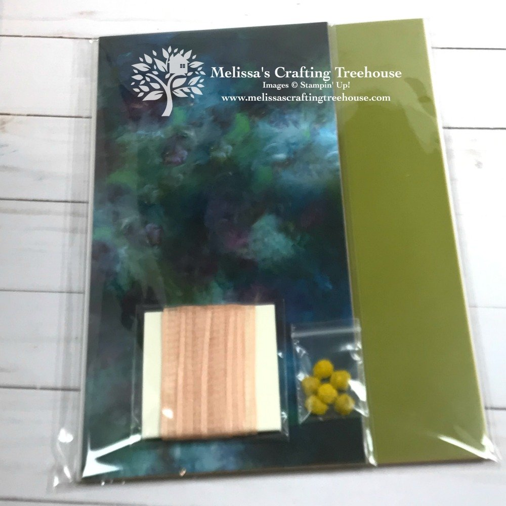 "The 2019 - 2020 Annual Catalog ""Taste of a Suite"" Product Shares are HERE! It's a Paper Crafter's Buffet featuring NEW Product Suites! Available to PreOrder through 6/5/19 ONLY!"