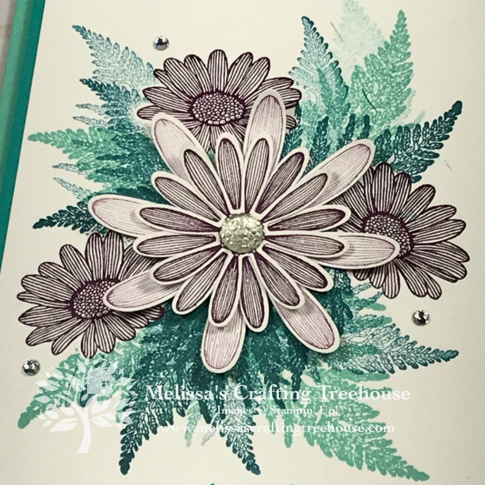 Today's projects were made for the August 2019 Color Challenge and Color Fusers Blog Hop. They feature the Daisy Lane Bundle.