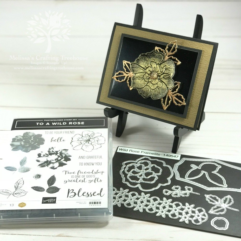 These unique handmade cards were created using the To A Wild Rose Bundle from the 2019 - 2020 Annual Catalog. They both use my Black Ice Technique.