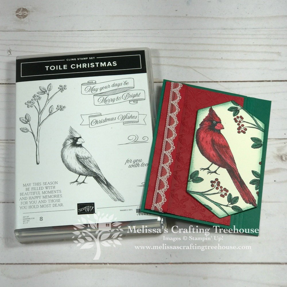 See 3 projects with 7 variations, a fun fold and a 3-D project too. DIY Paper Crafts galore! This project features a fun fold, and the Toile Christmas Stamp Set.