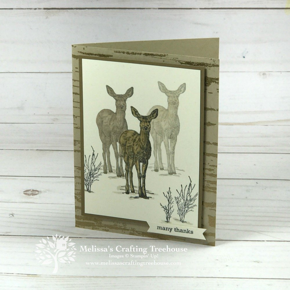 See four masculine cards made with the Natures Beauty Stamp Set. Purchase this set and money will be donated to the National Institute of Mental Health.