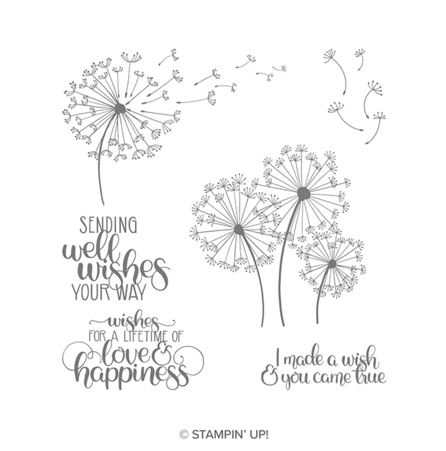 Dandelion Wishes Stamp Set Stampin' Up!
