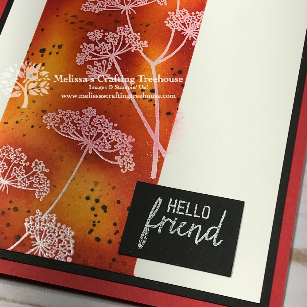 Check out my colorful cards made with Queen Anne's Lace Stamp Set. It's one of two FREE sets you get when you buy the Starter Kit this month!