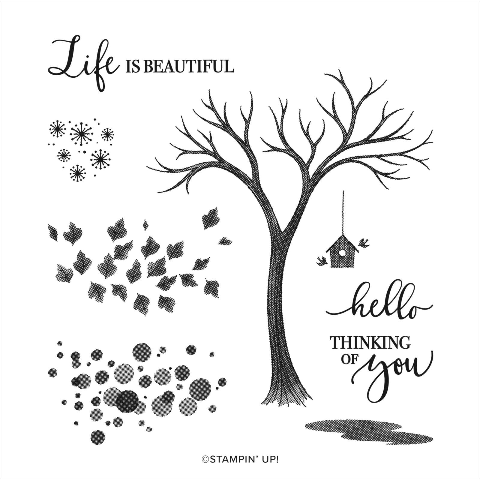 Life Is Beautiful Class