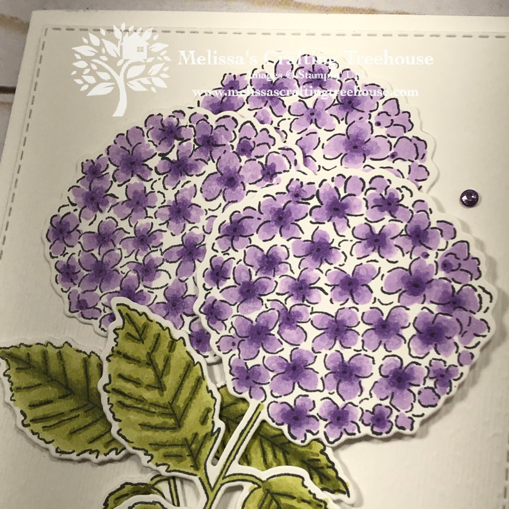 Today's post includes sneak peeks of the March 2021 Simple Suite Stampers Tutorial Bundle which features the Hydrangea Hill Suite.