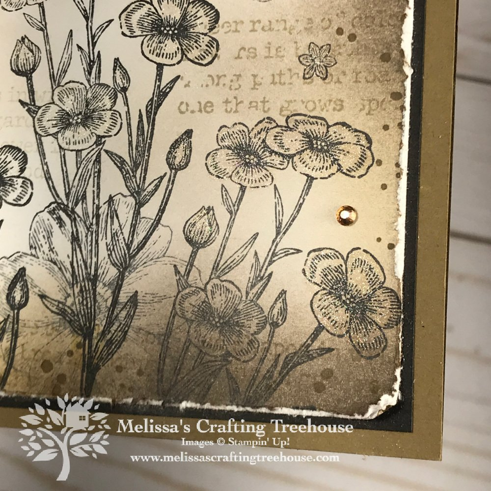 Combine a vintage collage look with a fun fold book binding card, for an easy & interesting card. Project features the Quiet Meadow Stamp Set.