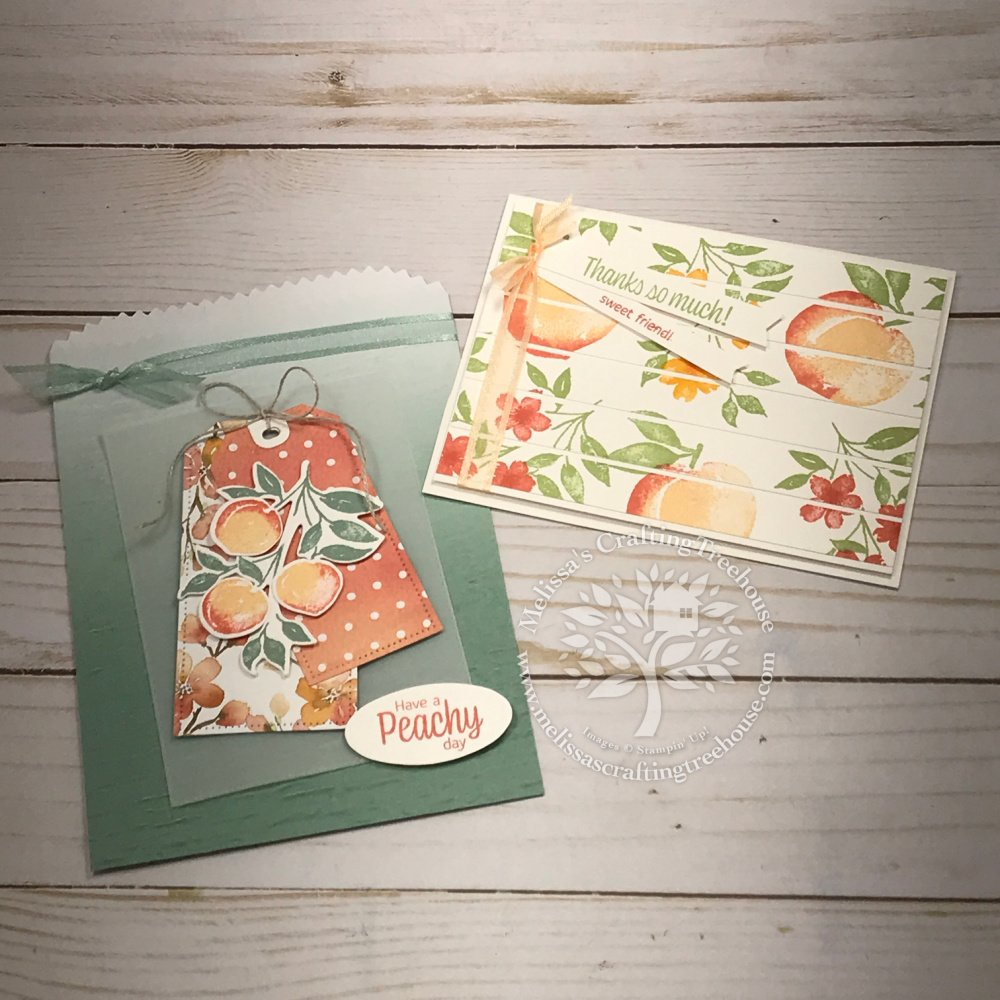 See sneak peeks of 2 project from the You're A Peach Tutorial Bundle! There are 12 tutorials in this Simple Suite Stampers Bundle.