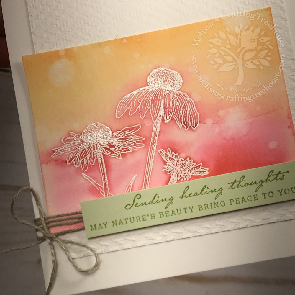 My Nature's Harvest Sunrise card features a simple Watercolor Wash with a heat embossed image. Petal Pink and Calypso Coral ink were used.